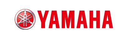 ヤマハ発動機 レーシングカート